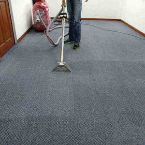 carpet cleaning dove canyon