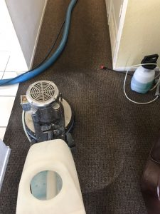 carpet cleaning placentia
