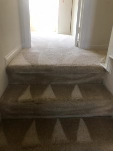 carpet cleaning in portola springs irvine