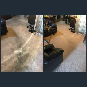 best carpet cleaners irvine ca