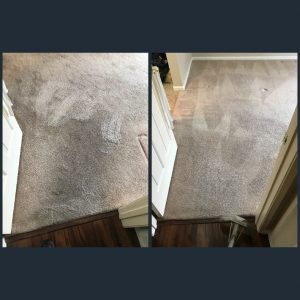 move out carpet cleaning in aliso viejo ca