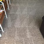 carpet cleanres