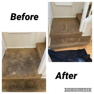Should You Use Carpet Cleaning Products For Spot Removal?